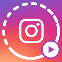 Instagram Feed + Stories