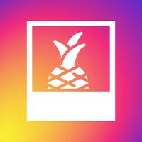 Piña Instagram Feed