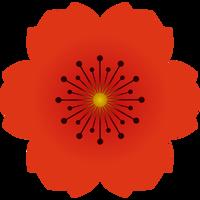 Poppy ‑ Free Exit Intent Popup