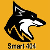 Smart404