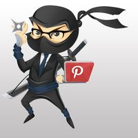 Pinterest Feed Ninja
