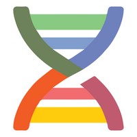 Beam.city DNA