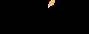 Wix Ecommerce blog