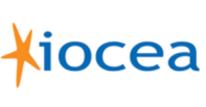 Iocea Ecommerce Insights
