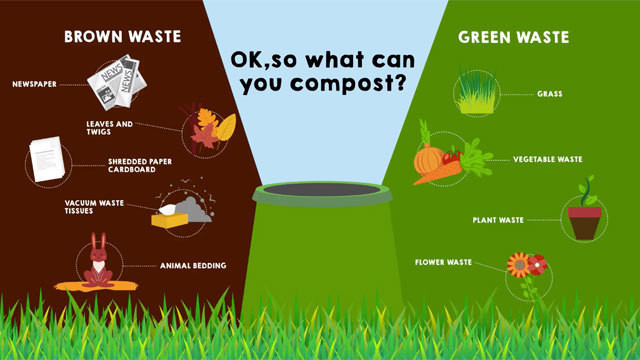 a chart explaining what you can and can't compost