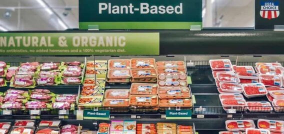 meat free future of food pynk community
