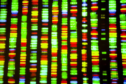 Pynk community personlised medicine investment gene sequence