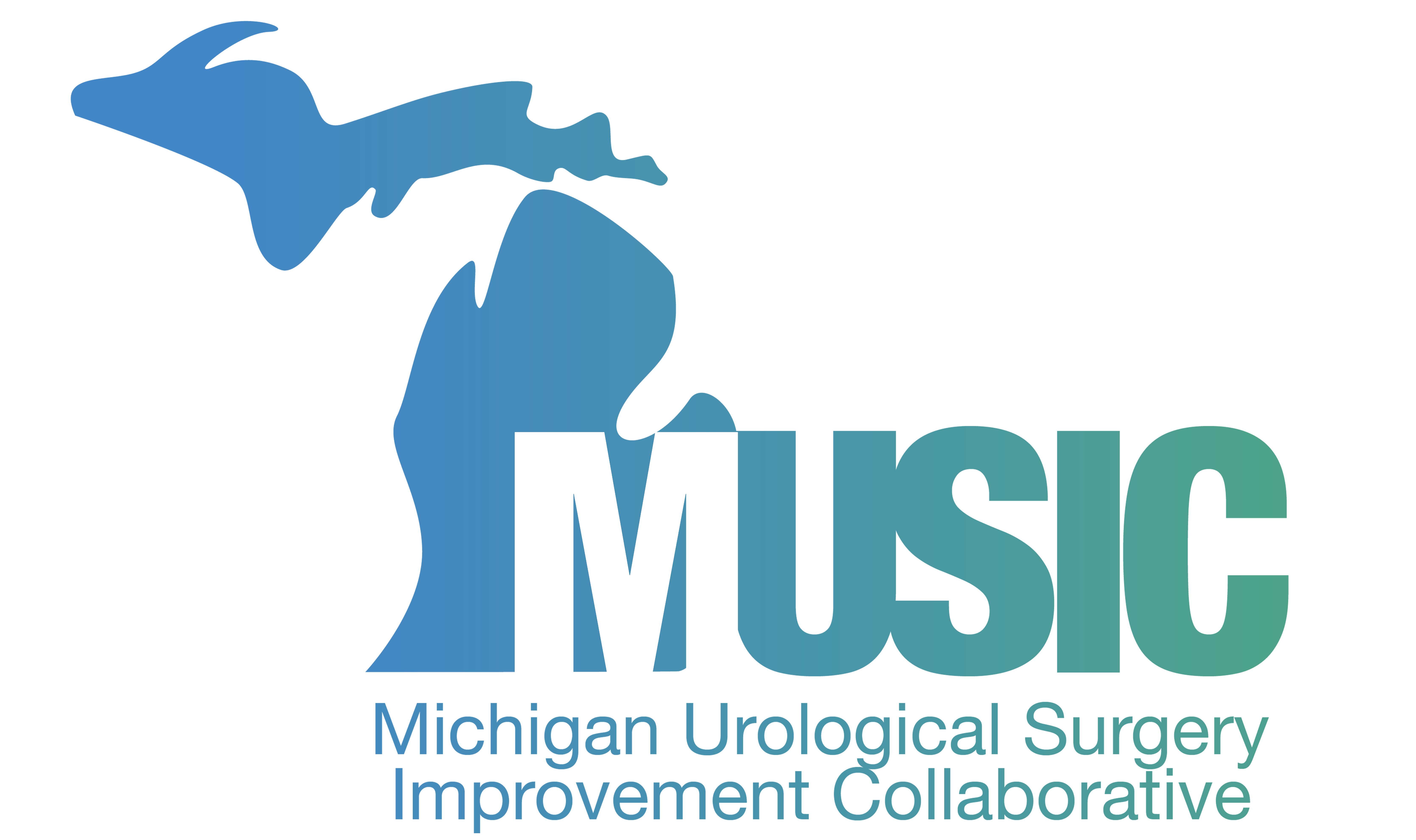 Michigan Urological Surgery Improvement Collaborative