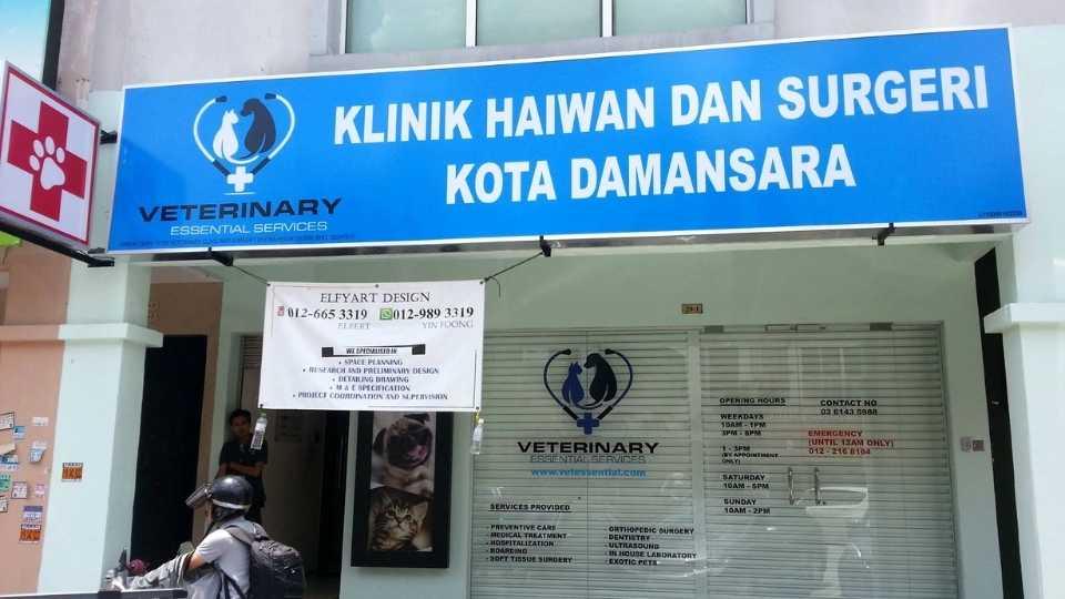 Veterinary clinic in Kota Damansara Area