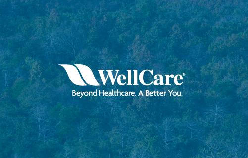 WellCare NH Network Update
