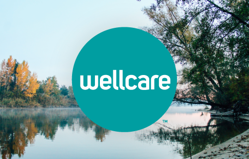 VT: WellCare Adds New Plan Targeting LIS beneficiaries