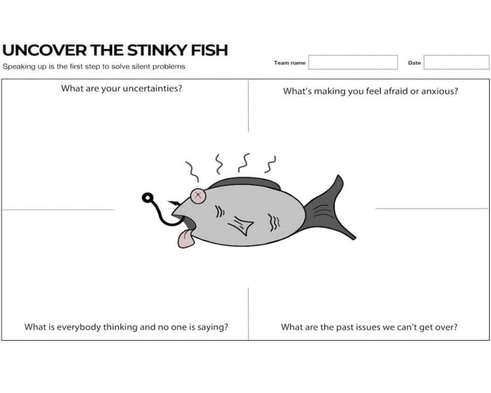 the stinky fish canvas is a visual tool to address team issues in the open