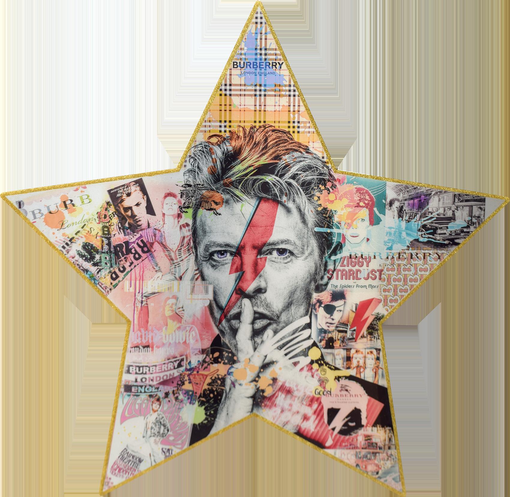Diederik - Star of Fame (Bowie) , 4504-016-271