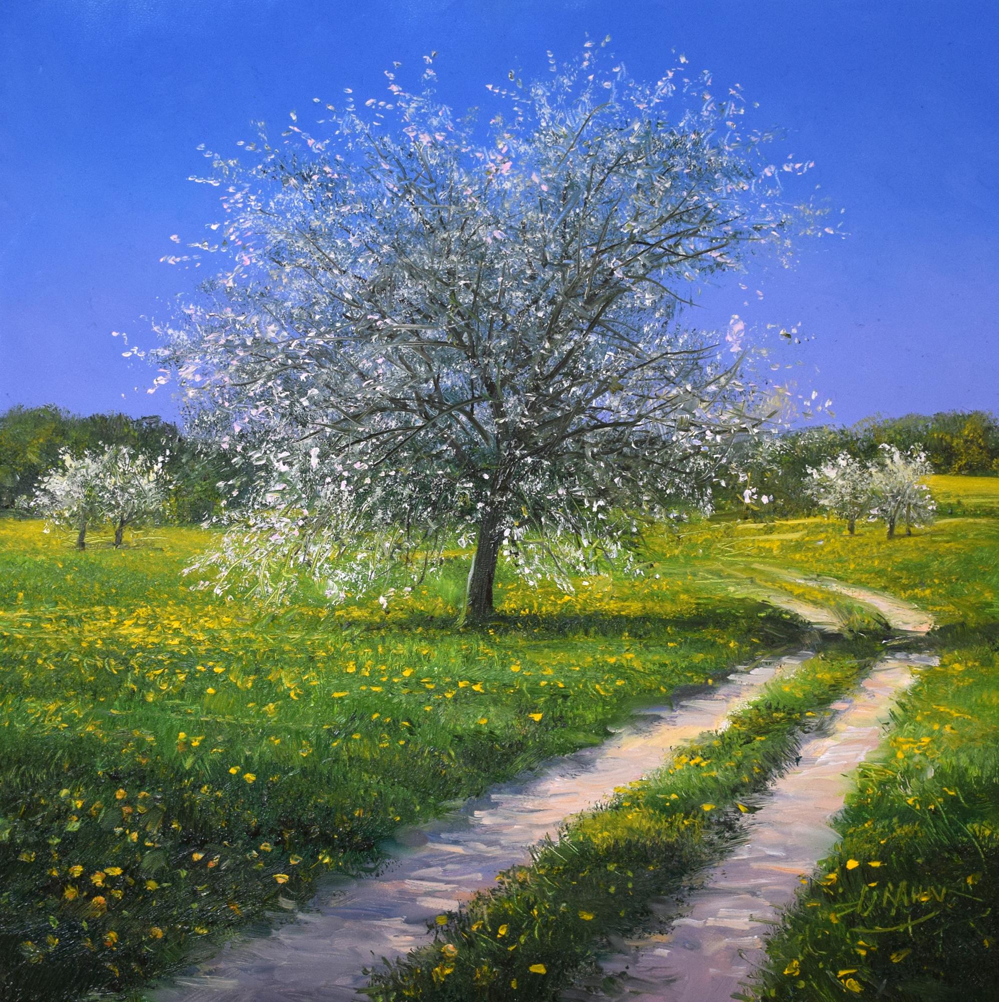 Detlef Rahn - Weg im Frühling , 7840-006-877