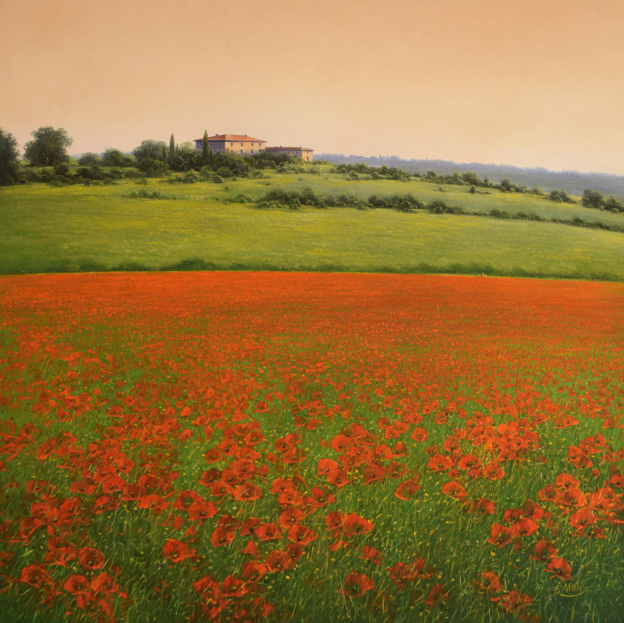 Detlef Rahn - Klatschmohn der Toscana , 7840-006-985