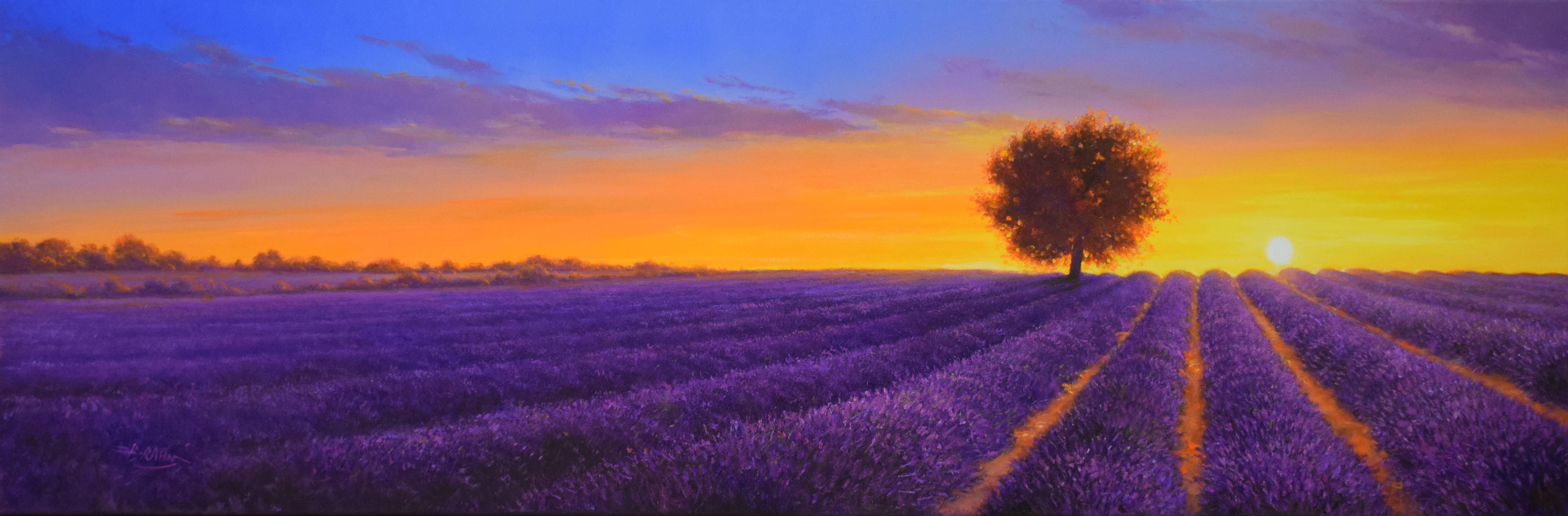 Detlef Rahn - Lavendelfeld, Provence , 7840-006-988