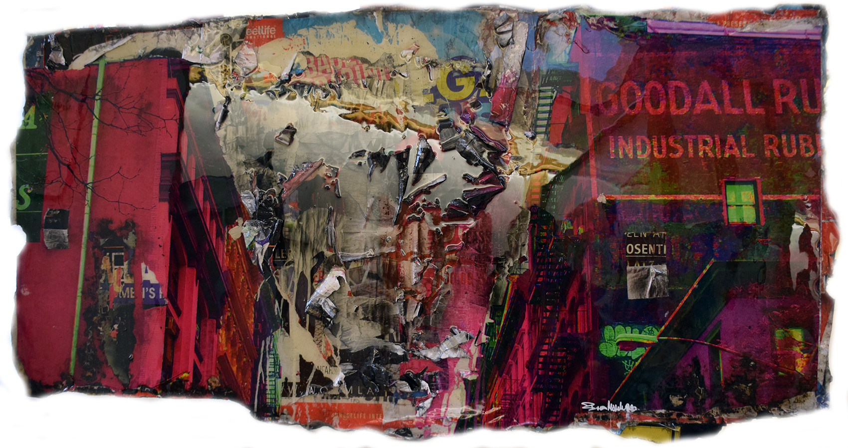Bram Reijnders - Goodall , 8029-012-898