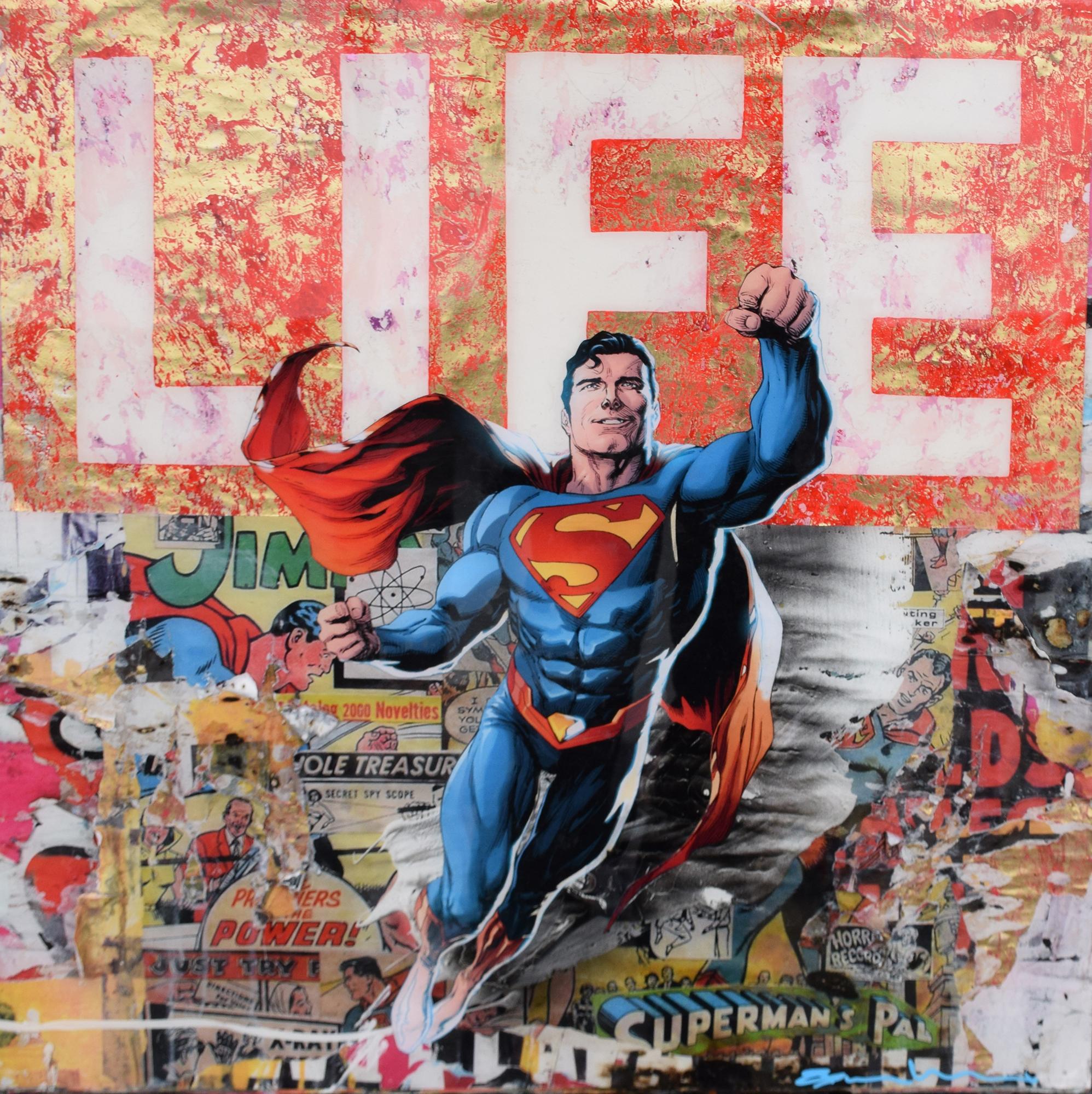 Bram Reijnders - Have a super (LIFE) , 8029-012-958