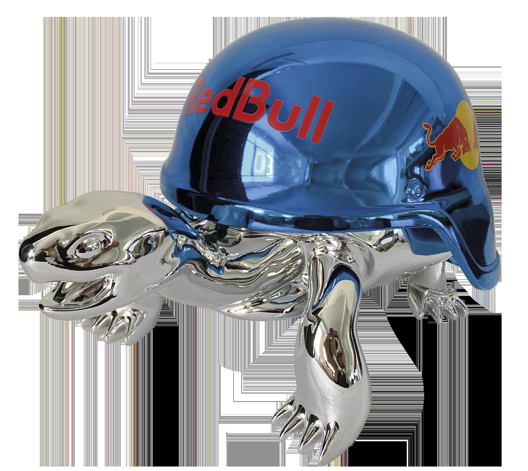 Diederik - Speed Turtle