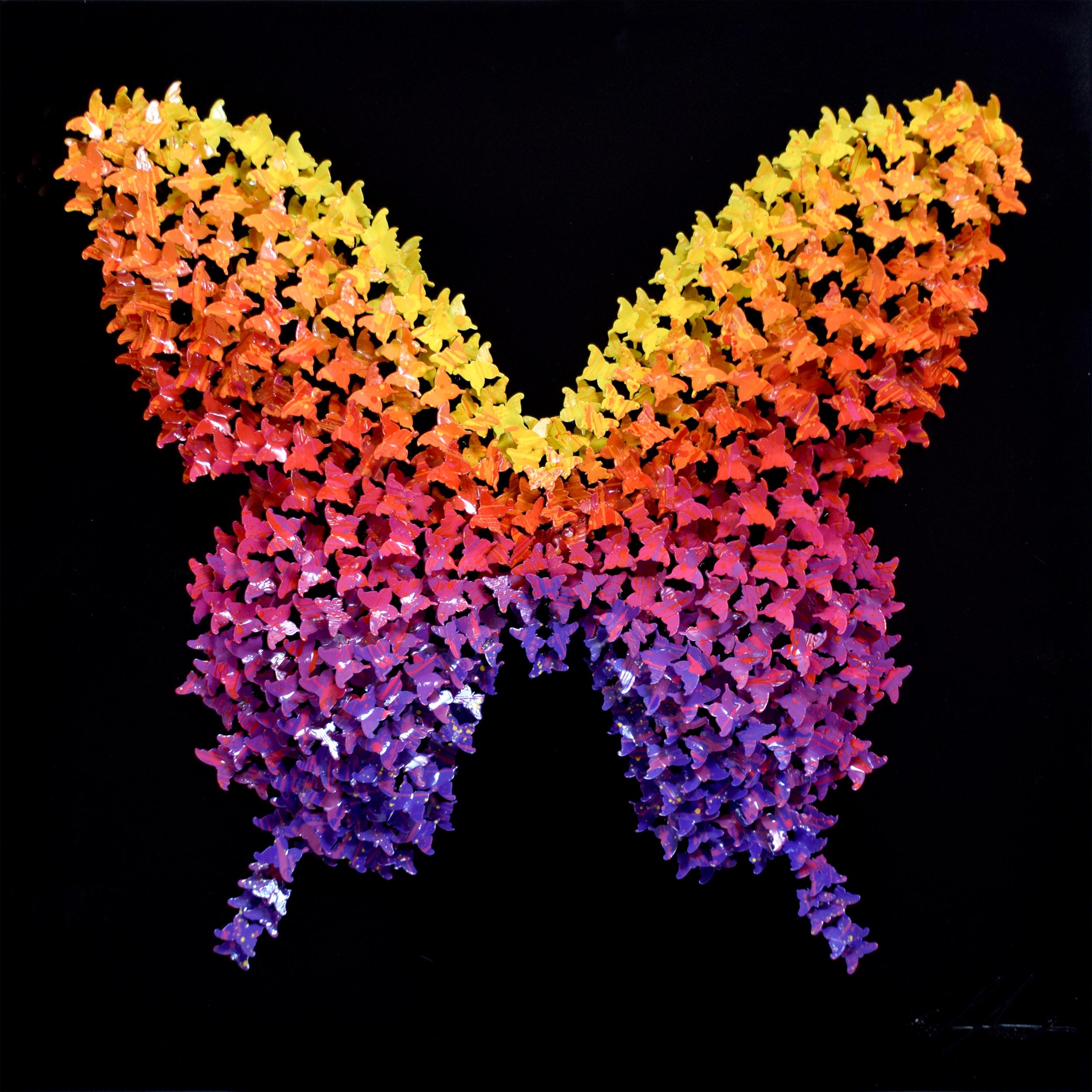 Joel Amit - Butterfly (Sunset) , 6665-012-102