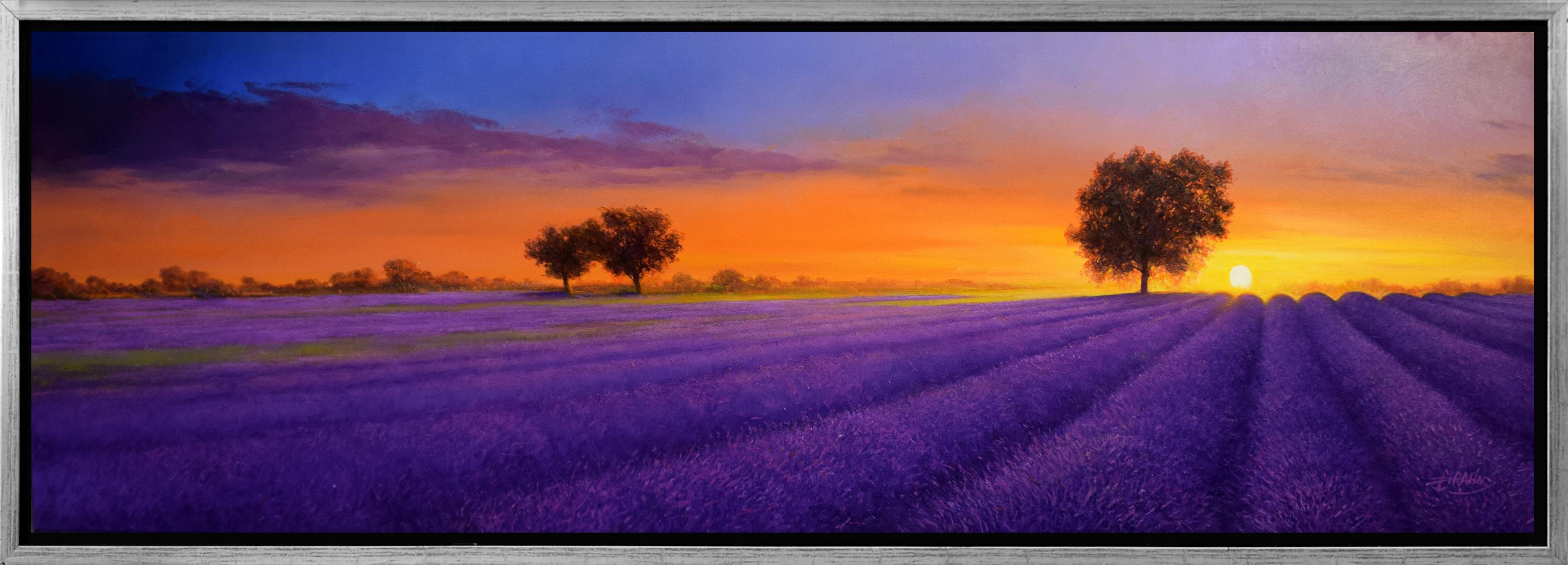 Detlef Rahn - Großes Lavendelfeld , 7838-006-057