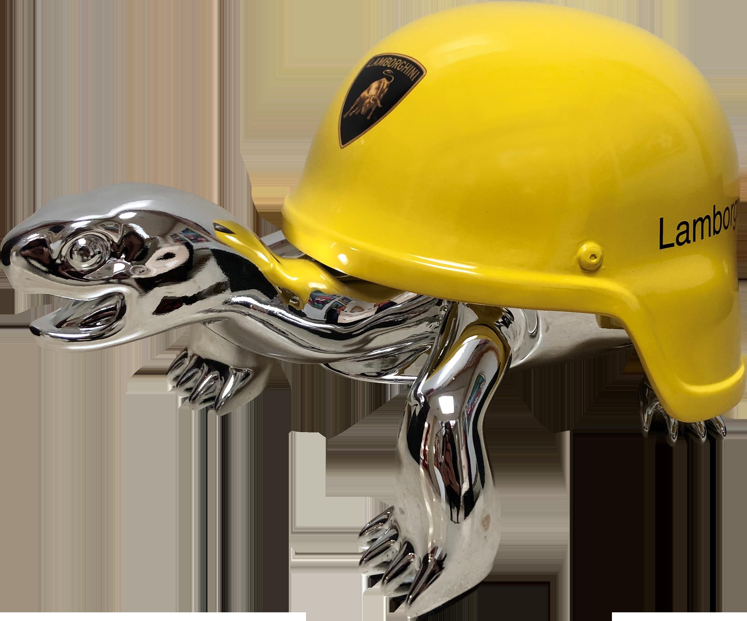 Diederik - Turtle (Silver Peace Lamborghini) , 4504-011-033