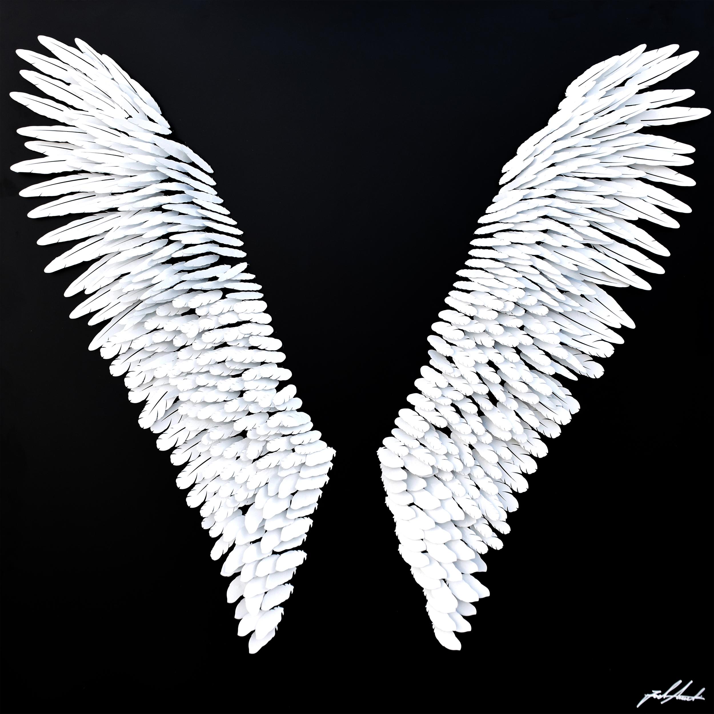 Joel Amit - Pair of Angel Wings , 6665-012-092