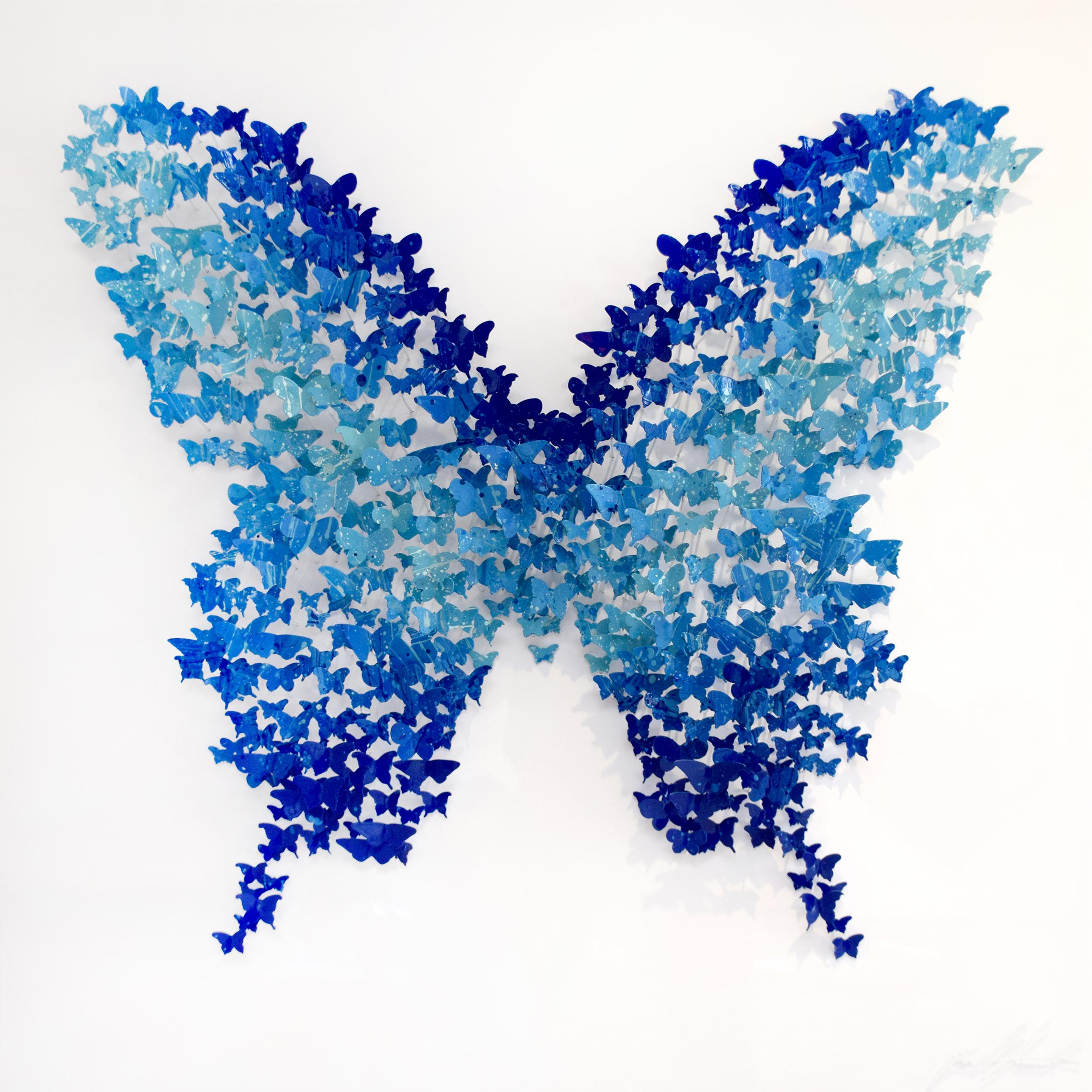 Joel Amit - Butterfly (Blue) , 6665-012-101