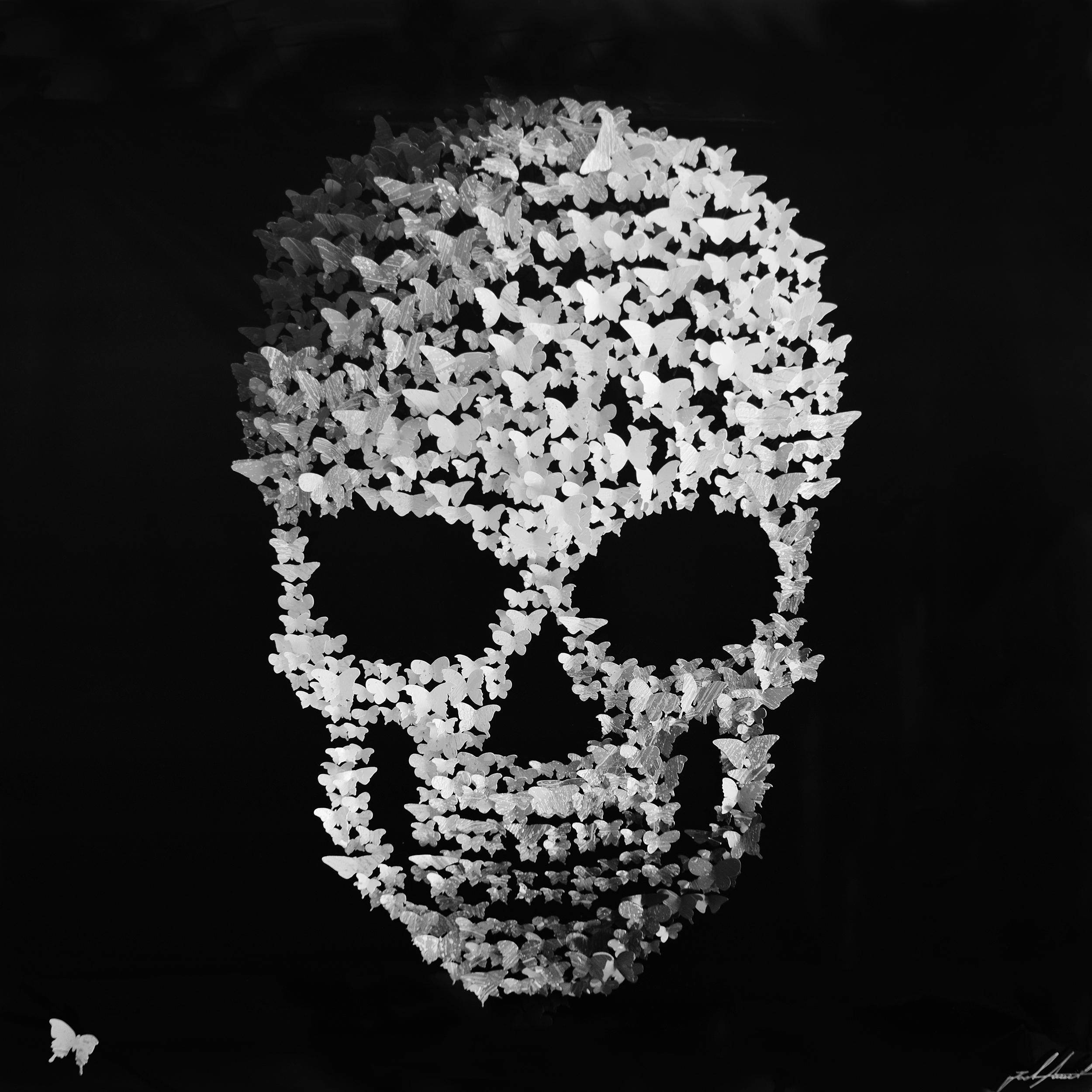 Joel Amit - Butterfly Skull , 6665-012-128