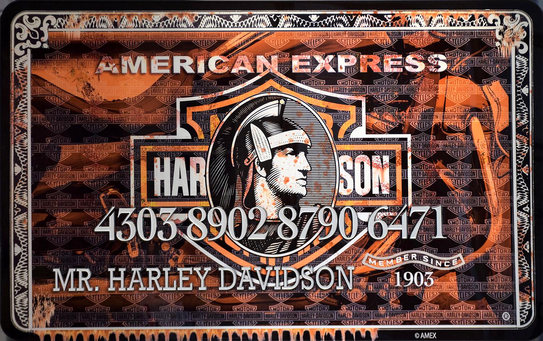 Diederik - AMEX (Mr. Harley Davidson) , 4504-016-262