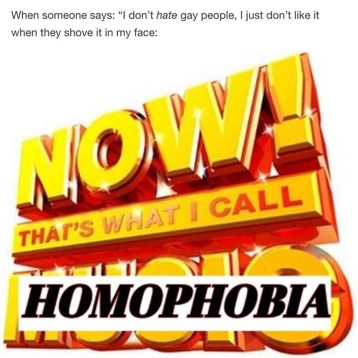 HOMOPHOBIA PRIDE MONTH MEME