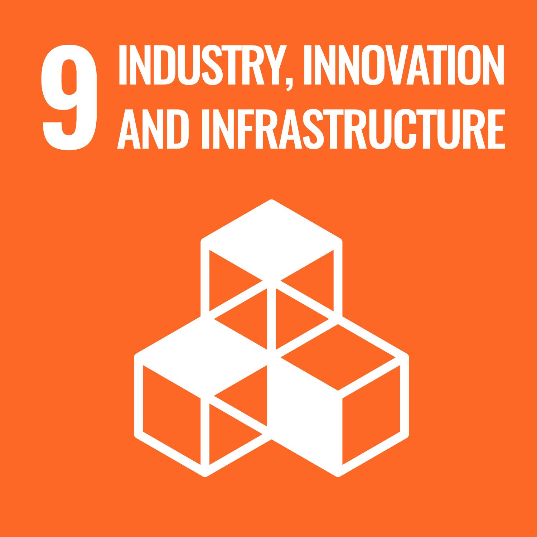 UN sustainable goals 9