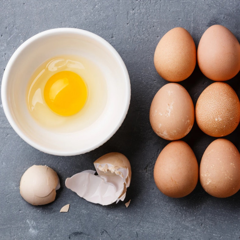 5 Reasons Eggs Should Be in Every Family's Refrigerator