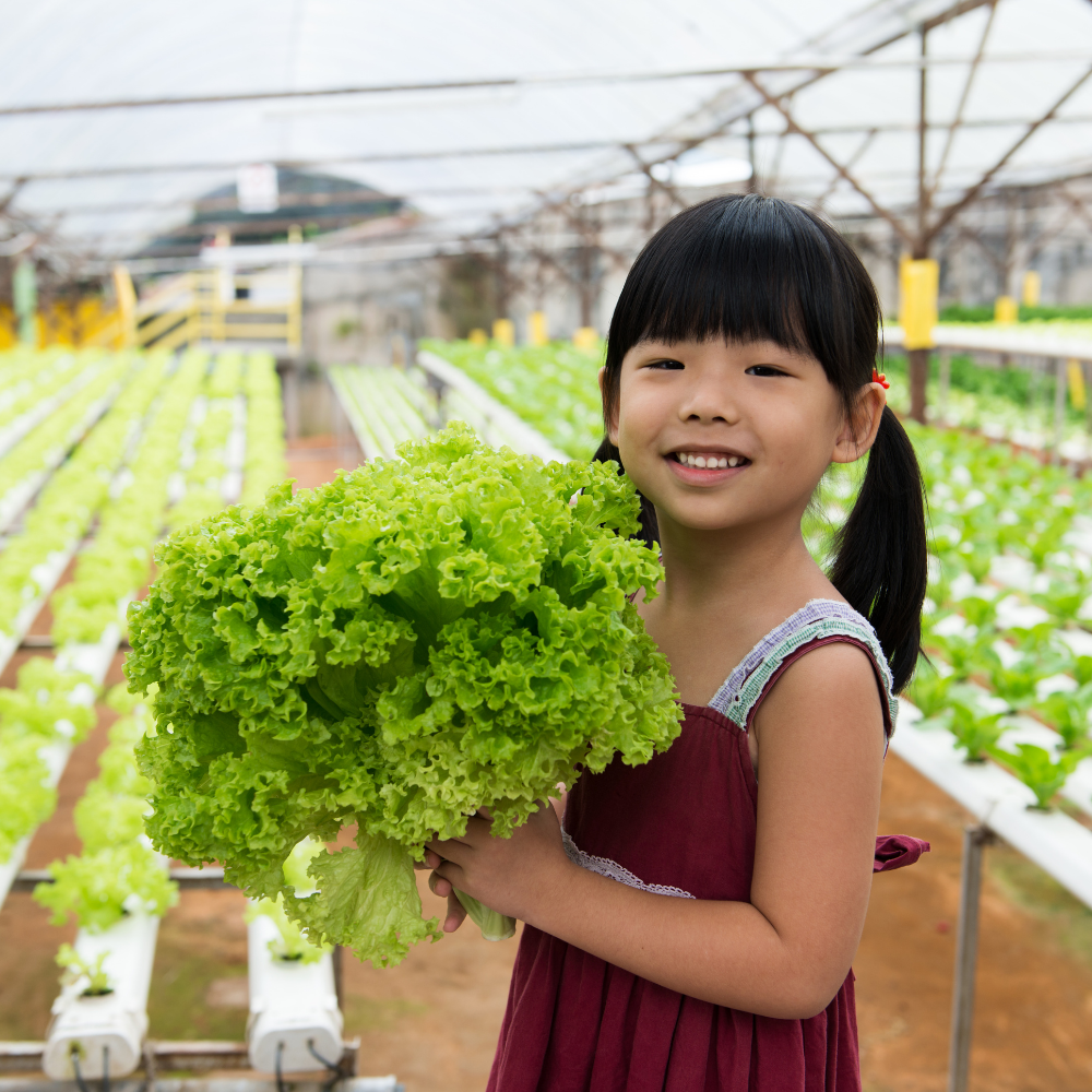 New Research: 7 Research-Backed Strategies to Help Your Kids Love Vegetables