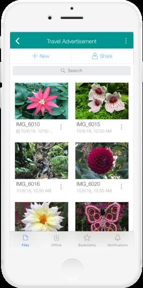 iOS 6.7 - Egnyte Blog