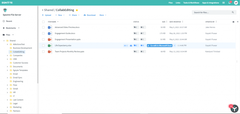 Egnyte and Microsoft Co-Edit WebUI