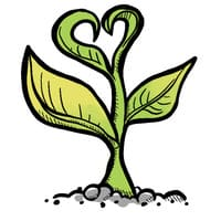 Produits ecologiques bons pour la sante
