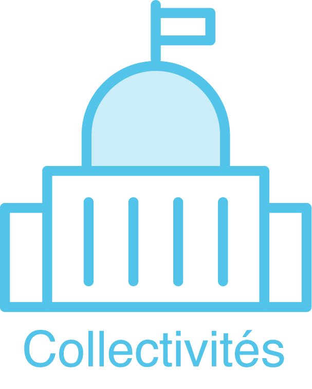 collectivité_icon