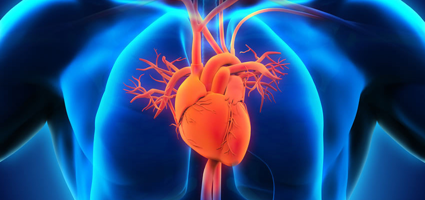 What's The Difference Between Heart Failure and a Heart Attack?