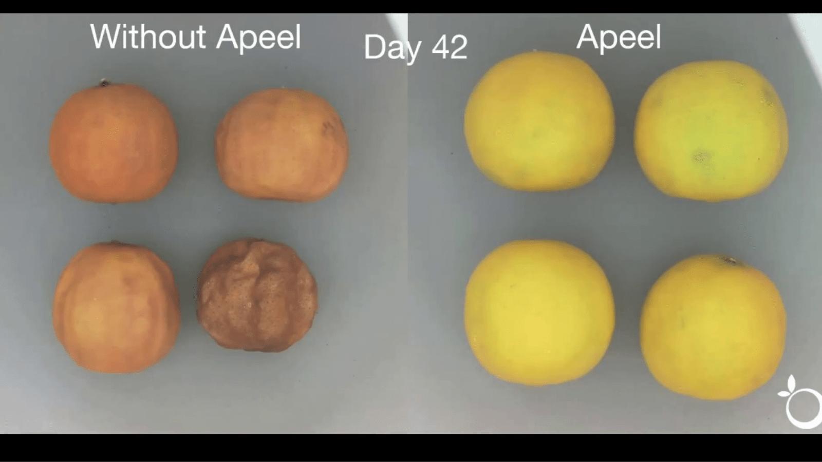Apeel Sciences