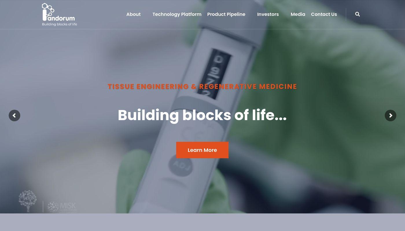 182) Pandorum Technologies