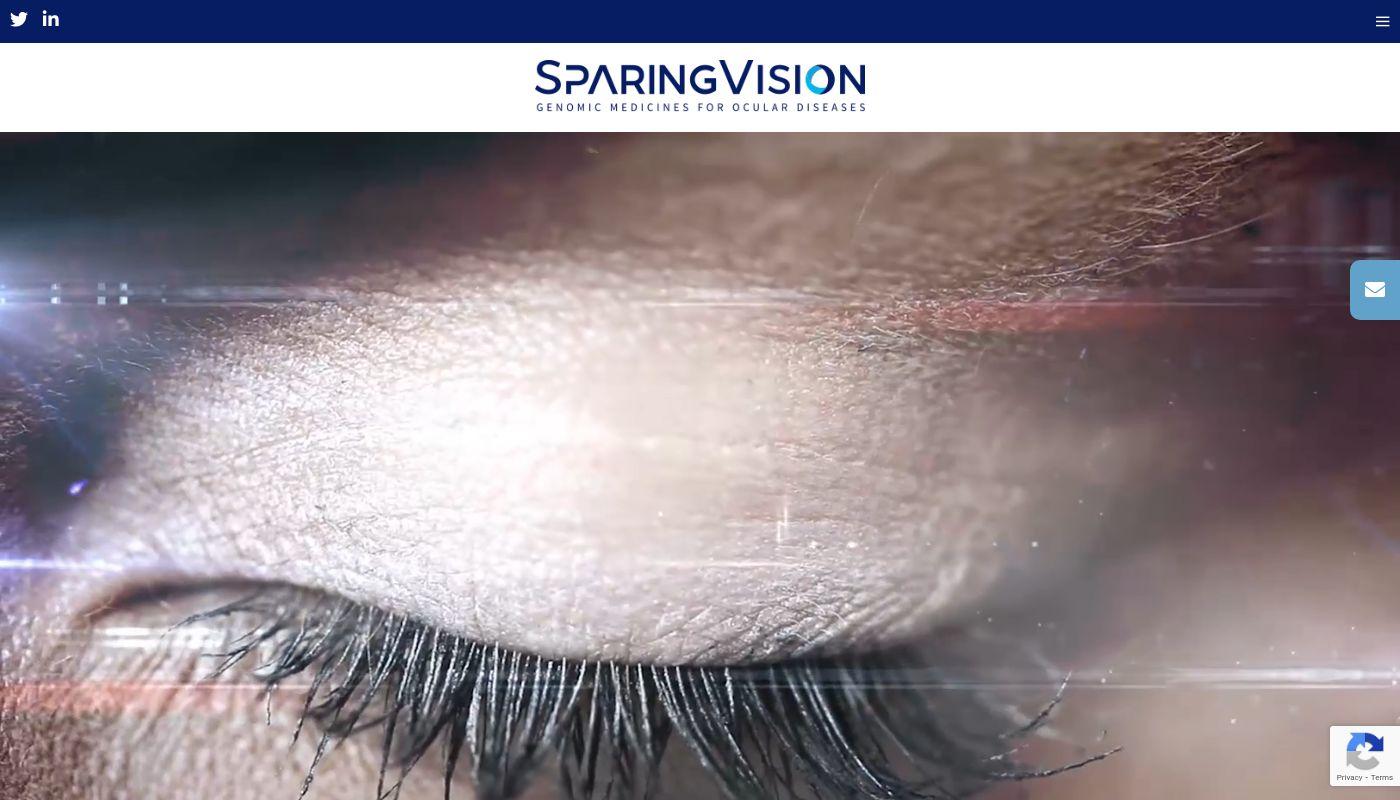 295) SparingVision