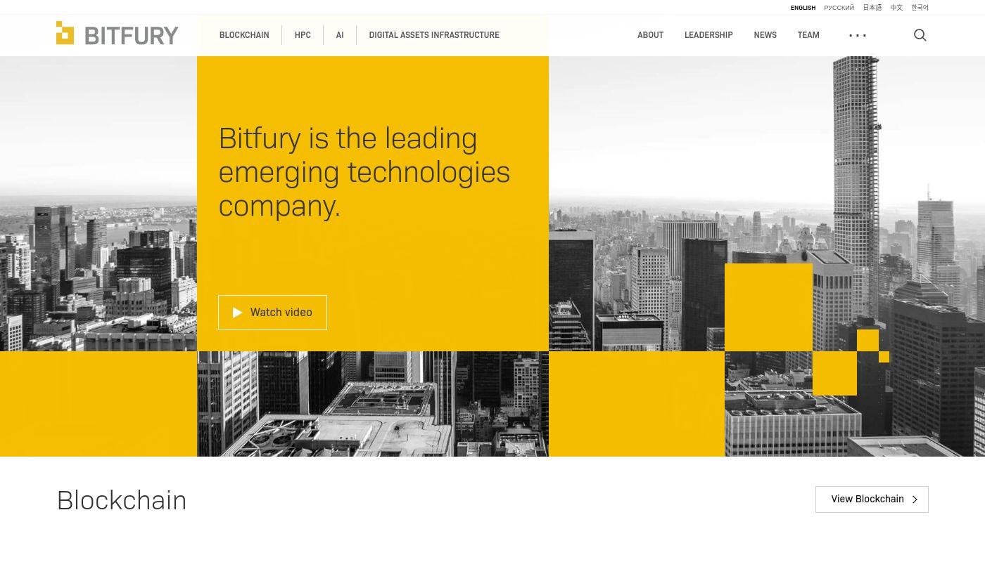 5) Bitfury Group