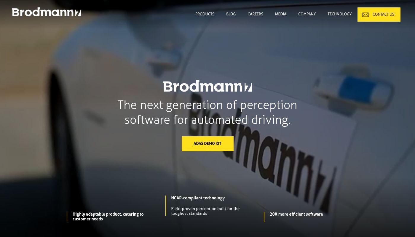 56) Brodmann17