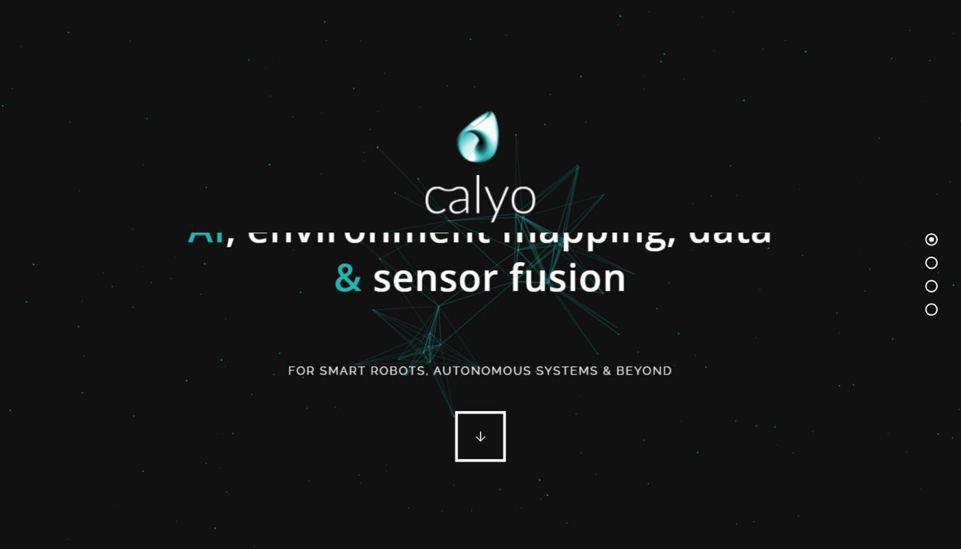 69) Calyo