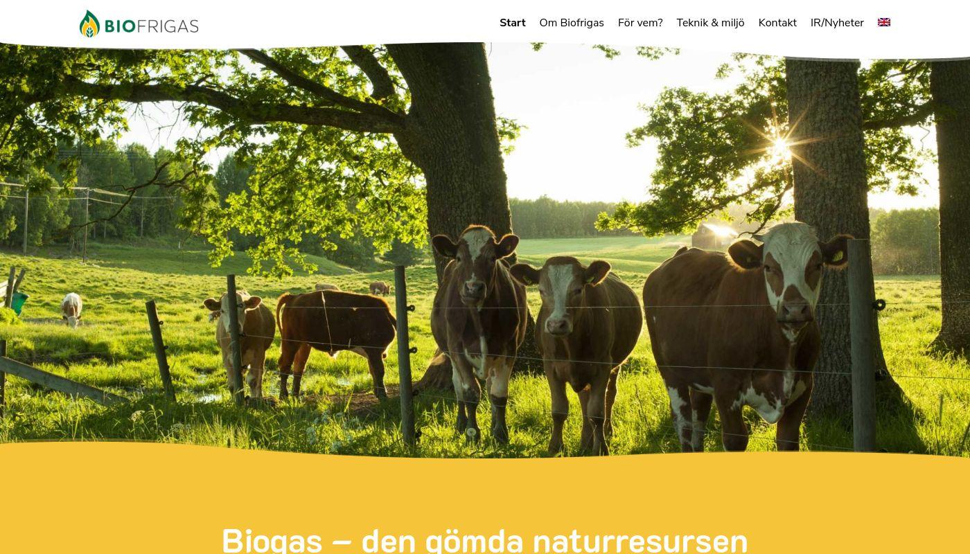 291) Biofrigas