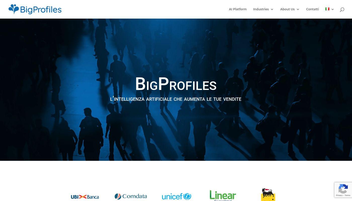 8) BigProfiles