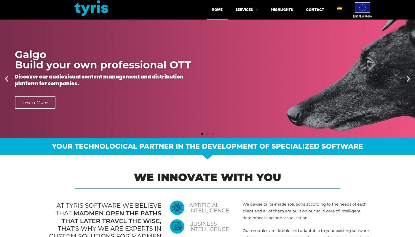 41) Tyris Software