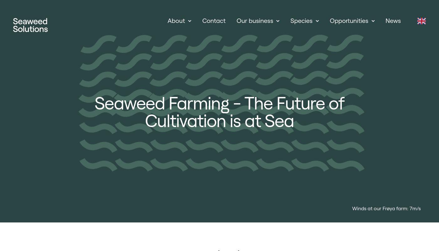 10) Seaweed Energy Solutions