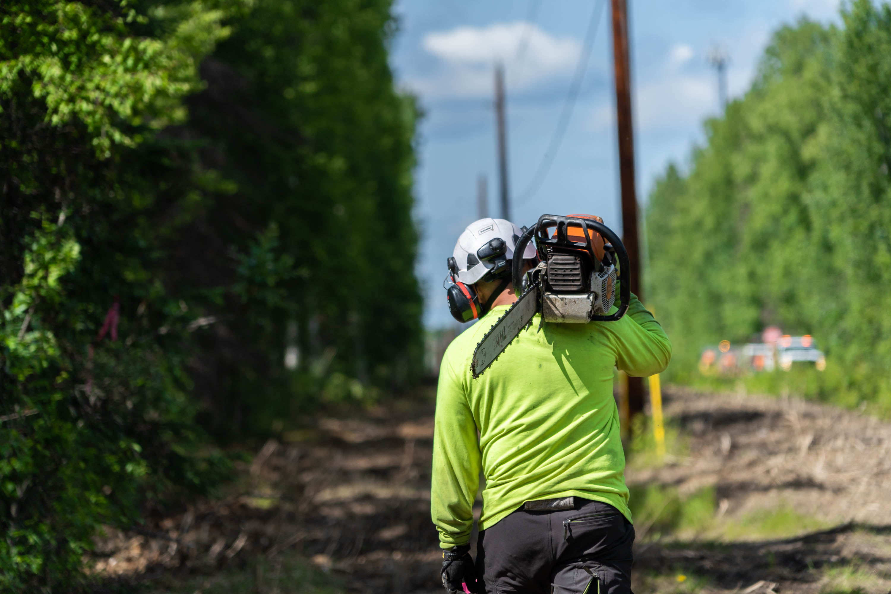 Clearing and Vegetation Management